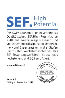 FELFEL ausgezeichnet Swiss economic forum high potential